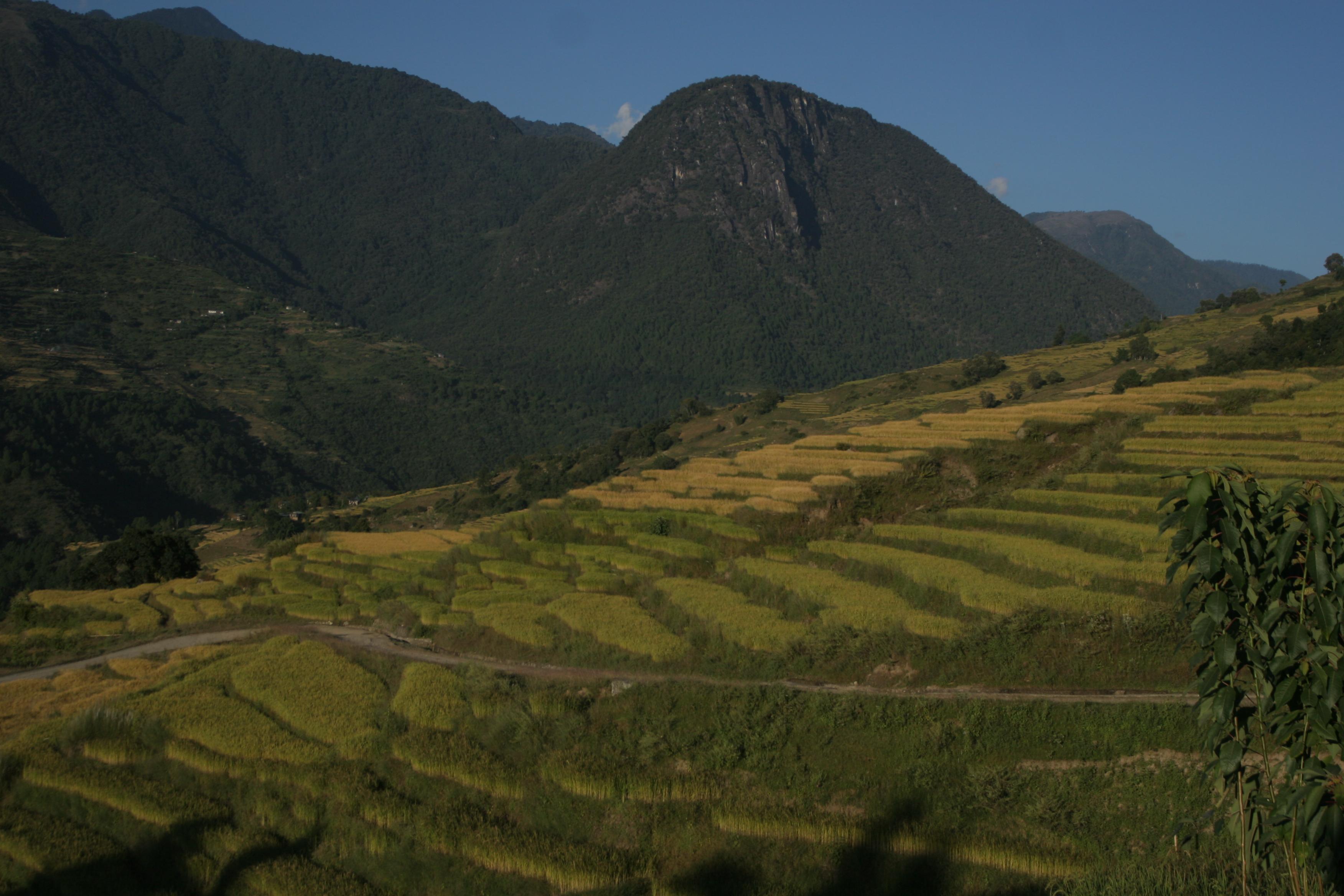 Radhi | BhutanVisit