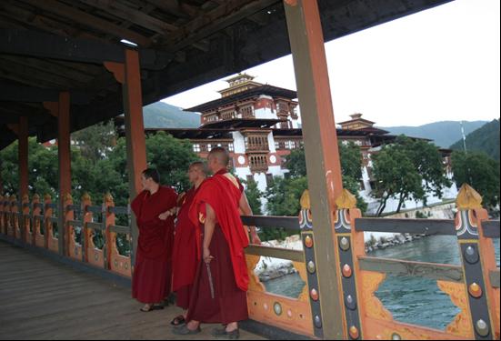 Punakha Dzongs | Bhutan Visit